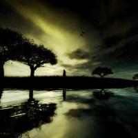 Paysages virtuels